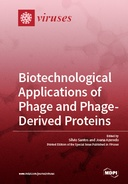 Biotechnological Applications of Phage and Phage-Derived Proteins