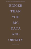 Bigger than You: Big Data and Obesity - An Inquiry toward Decelerationist Aesthetics